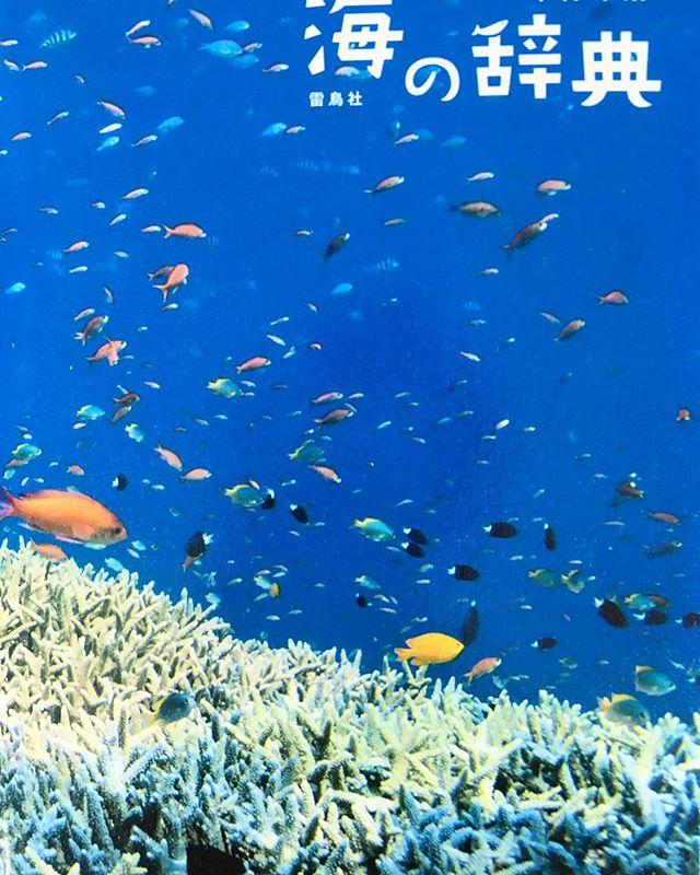 「海の辞典」 海の色や音、波や潮の名前、海にまつわる大切な言葉など綺麗な写真付で解説されています。 見ているだけでも癒されますよ(^^) アルタナカフェは本日も10時よりオープン中です。