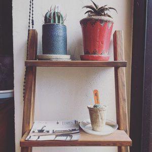 ハナレの或る棚。 グリーンを飾るのにピッタリの階段状の木製棚、設置しました! 狭い場所にも収まり、様になる棚は玄関や廊下に置いても良さそうですね(^^) こちらの手作り棚はアトリエhiroさんの作品。気になる方はスタッフまでお声かけください!