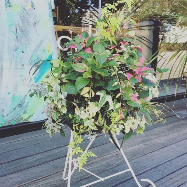 「カトラリーバスケット」 様々な植物が合わさってお互いに負けまいと生命力を発揮! 今日は少しだけ気温も下がり植物にとっても過ごしやすいかもしれませんね(^^) アルタナカフェは本日も10時から17時までのオープンです。