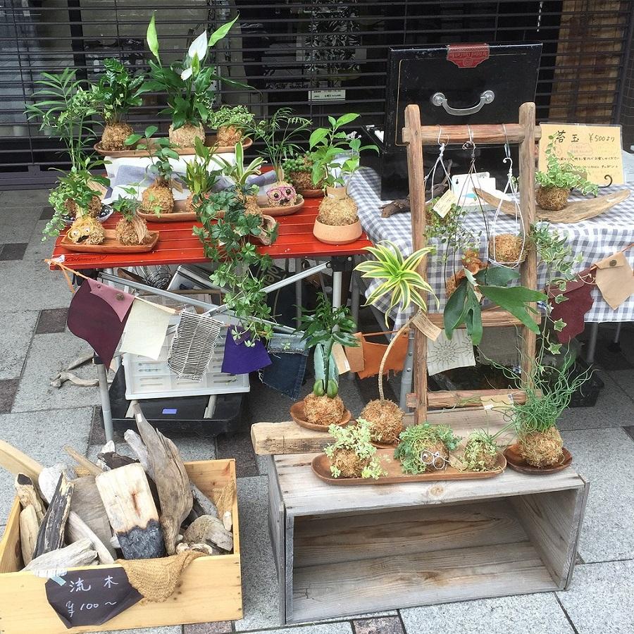 「小さなお庭 苔玉作り教室」