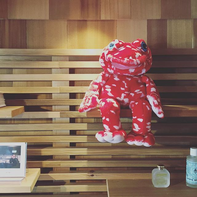 「山田ゆか愛用品の棚」プレイトーキンのパペット、ケログ。 9/21thu.本日も11:00〜オープンします!