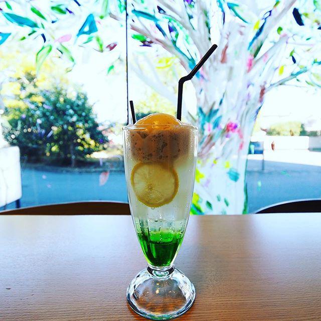ペレットストーブ近くの一枚板大テーブル近くで、暖まりながらのアルタナレンジャークリームソーダもおススメ!本日朝カフェ8時〜17時openしてます。