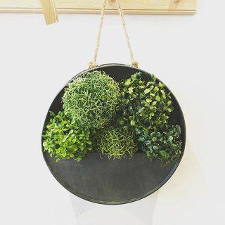 """◆本日限定SALE! . ・adepeche galvo circle planter M 定価¥2,700+tax →30%OFF!¥1,890+tax . シャビーシックなプランター。 ブリキと麻ひもの組み合わせが 無骨で"""""""