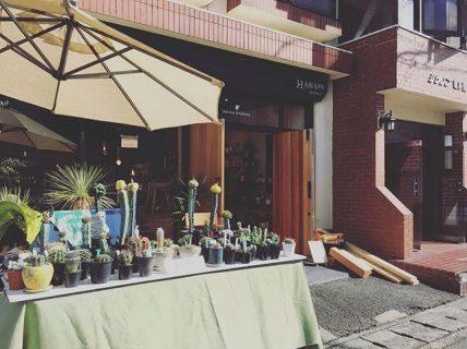 . おはようございます🌞 本日は月に一度のイベント「テーブルマーケット」開催! 朝9時よりOPENしました。 . 木っ端・ハギレ市のほか、グリーン即売会、テーブルマーケット限定のアウトレットセールを開催! . 皆様のご来店お待ちしております!