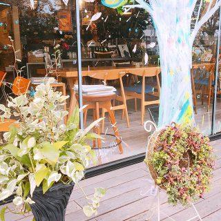 新しい植物(お花)届けていただきました(^^) プランツギャザリングという手法で作られているそうです。 アルタナカフェは本日も10時から17時までのオープンです。