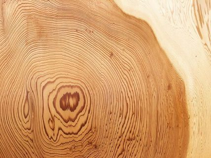 ◆MUKU-TEN 秋田天然杉