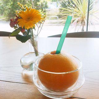 生搾りフレッシュジュース 「カジュッタ」 オレンジとグレープフルーツの2種類がありランチセットのドリンクから料金変わらずにお選びいただけます ドリンク単品でもご注文いただけます!