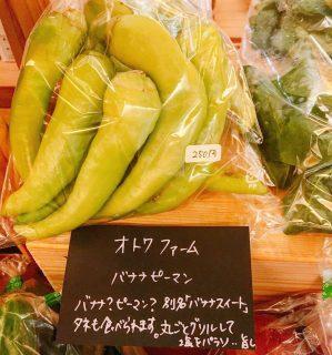 本日この後9時より 「アルタナテーブルマーケット」開催します 今回オトワファームさんのバナナピーマンも入荷しました。