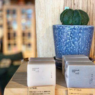︎ 植物の力で癒されたい、そんな毎日。 涼しげな青い鉢のグリーンと、天然素材100%の手作り石鹸。 まにまっく石鹸 レギュラー石鹸 900円+税 ・シアおこめ ・ラベンダーミント @ocm.cactus.entertainment