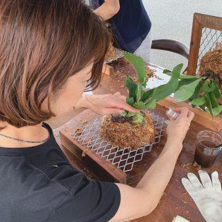 ︎ 昨日9/14(土)、「ビカクシダの額縁アレンジワークショップ」を開催しました! 富士市の個性的な植物屋さん @chestnuts.green さんを講師にお迎えし、屋外のテント下での作業を行なっていただきました。 インテリアとして人気の高いビカクシダをセンス良くアレンジ ご自身で作るとまた、愛着も湧きますね! 参加者の皆さん、 @chestnuts.green さん、このたびは誠にありがとうございました! ハナレアルタナでは、今後も自然素材を使ったワークショップを企画していきますので、お楽しみに! ︎ 本日9/15(日)も11:00〜17:00オープンいたします! 新入荷の 一枚板が多数、ご覧いただけますぜひ、ご来店お待ちしております️ ︎ ︎