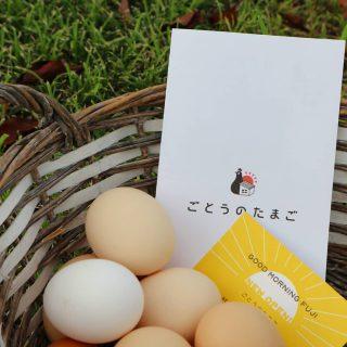 \\ごとうのたまご️// おはようございます。 料理、デザート、焼き菓子 アルタナカフェで使用する 全ての卵は ごとうさんに お届けいただいております。 @goto.tamago 本日もアルタナカフェは 10時~17時営業 皆さまの御来店を お待ちしております♪