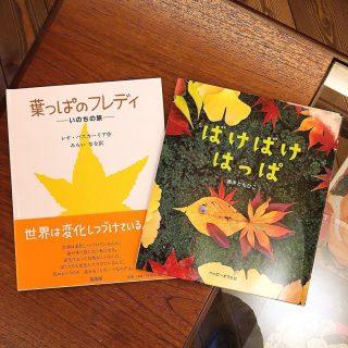 11月のもりの書店さんセレクト絵本のテーマは 「紅葉・落ち葉」 他にもセレクト絵本がありますので気になる方は見に来てくださいね