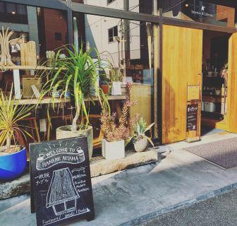 ︎ ハナレアルタナの入口は南向き! ポカポカで気持ちの良い日差し️ 植物も元気です 4/6(月)本日17時までオープンしております! 完備